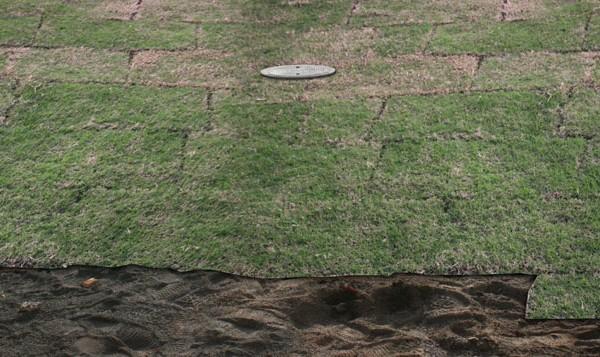 Lattice™ Underground Installed in a Backyard