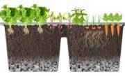 PlantaPod-02-raised-garden-bed