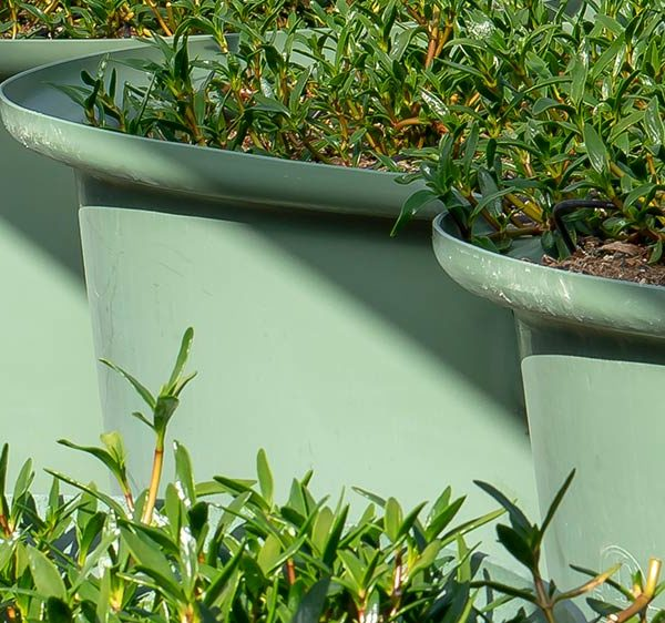 PlantaPod-06-raised-garden-bed